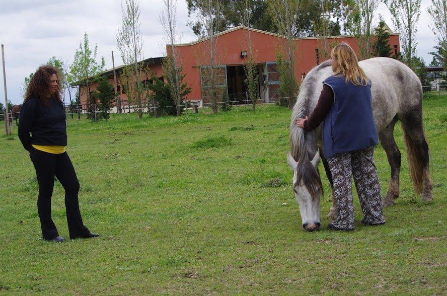 Marly à esquerda observando integrante interagir com cavalo