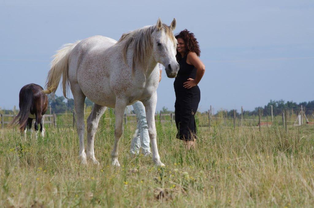 Cavalo à frente e Marly de fundo o observando