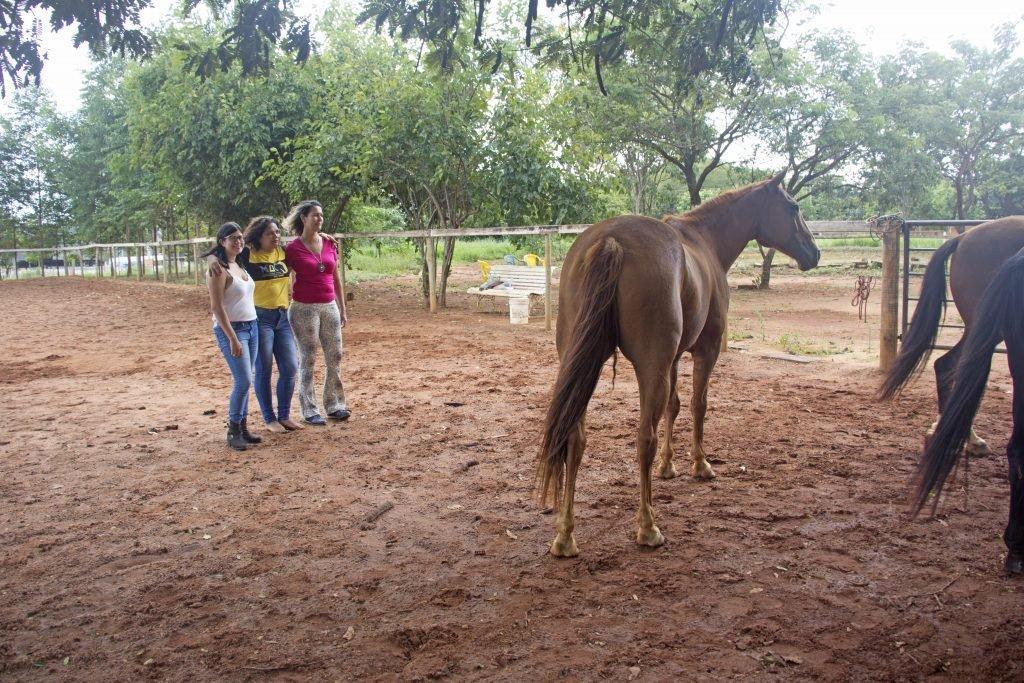 Trio que inclui a Marly à esquerda e grupo de cavalos à direita