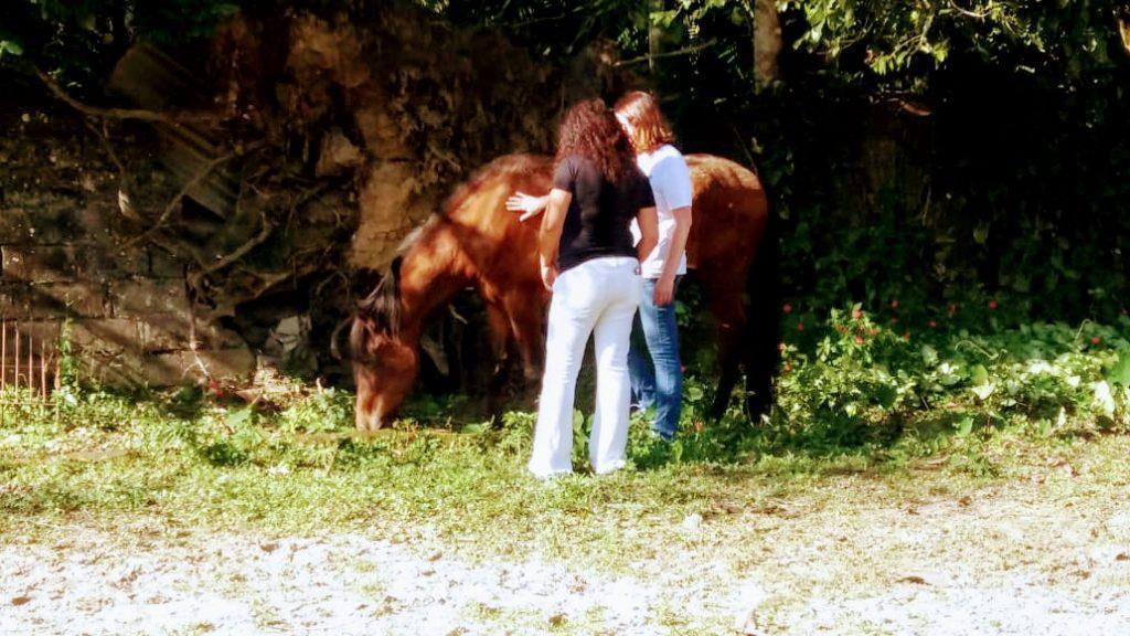 Marly observando integrante interagindo com cavalo